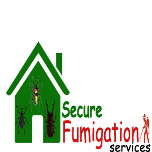 pest control, termite proofing, bed bugs,fumigation in Karachi - Termite treatment, Home fumigation services in Karachi