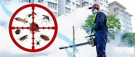 fumigation in karachi