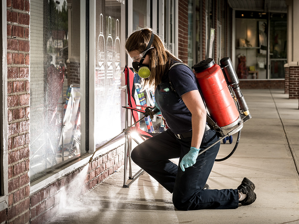 Secure Fumigation pest control services pest control fumigation termite proofing Cockroach treatment bed bugs treatment