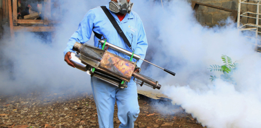 fumigation services in karach