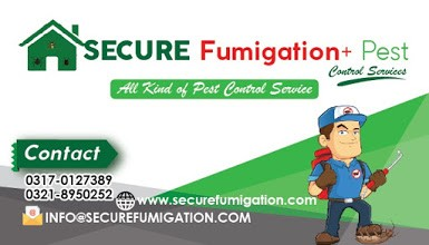 Fumigation service in karachi